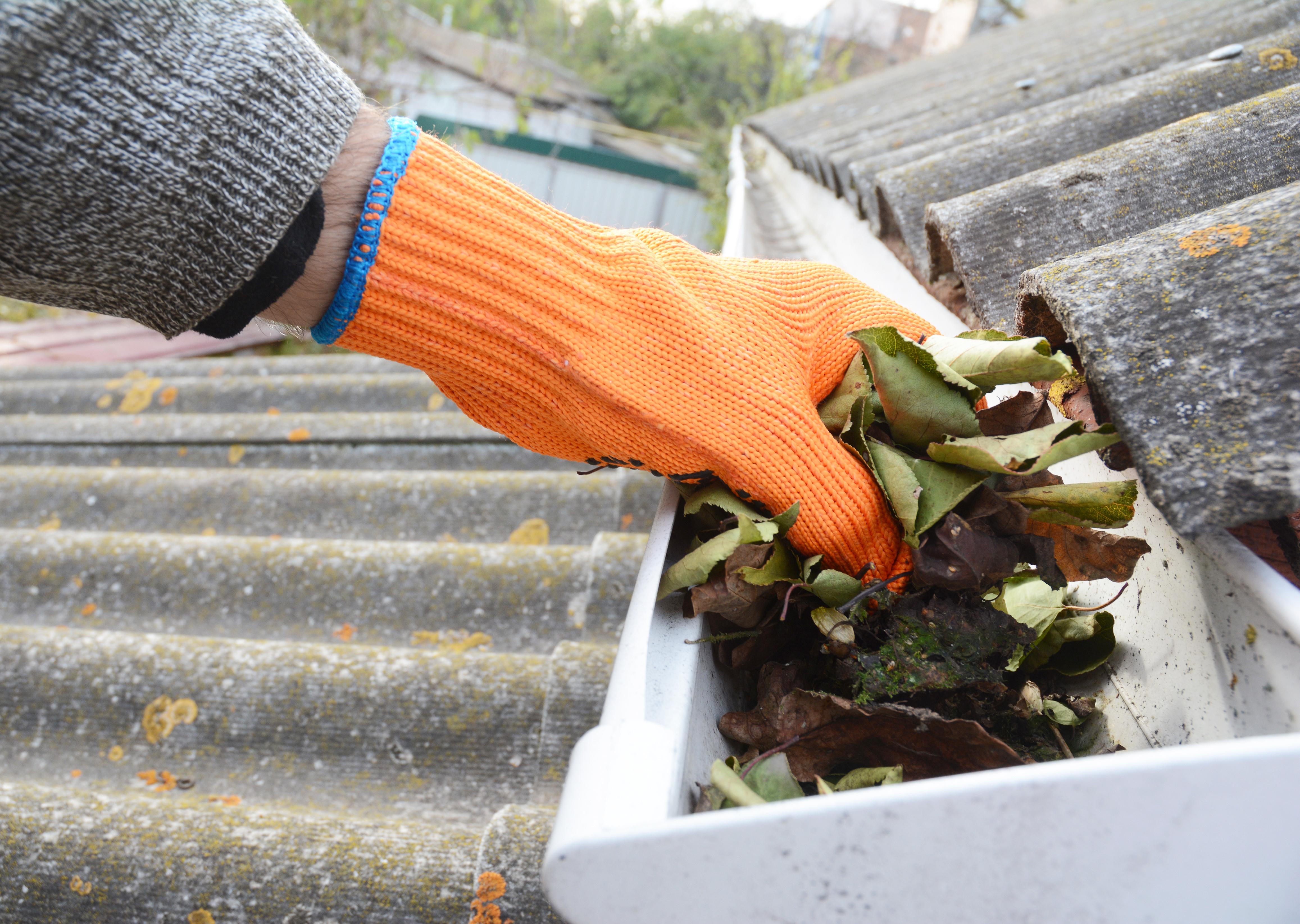 Seasonal Gutter Cleans